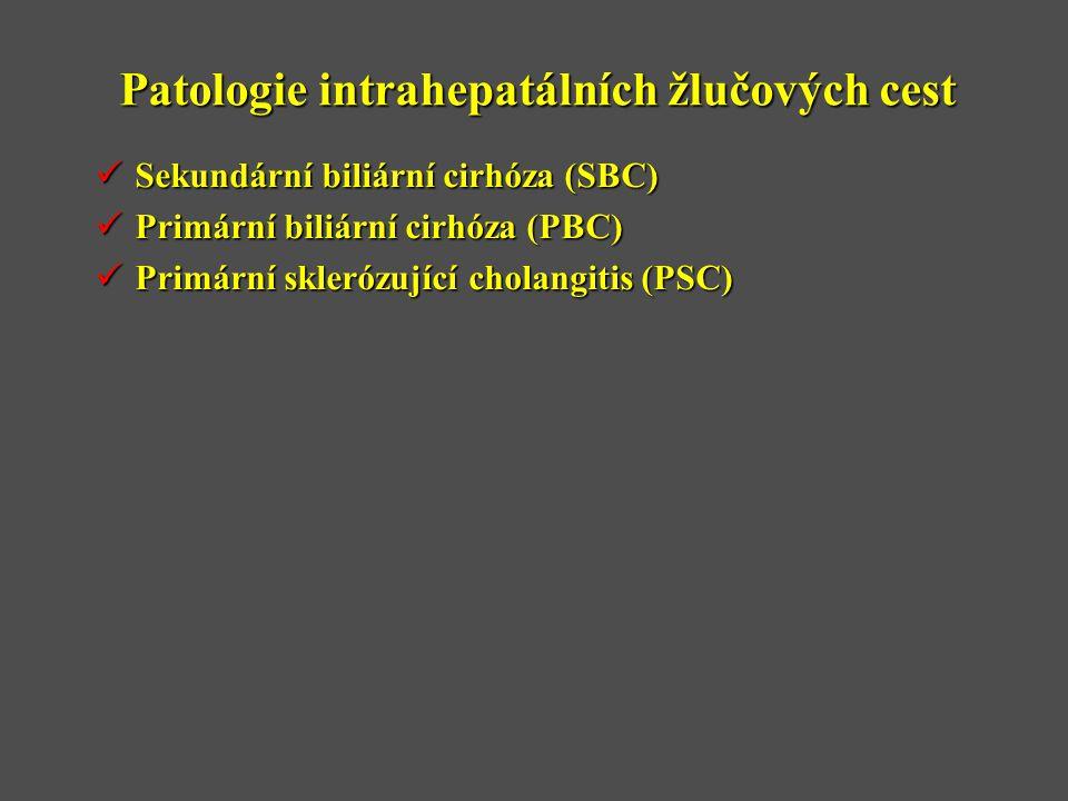 Patologie intrahepatálních žlučových cest  Sekundární biliární cirhóza (SBC)  Primární biliární cirhóza (PBC)  Primární sklerózující cholangitis (PSC)
