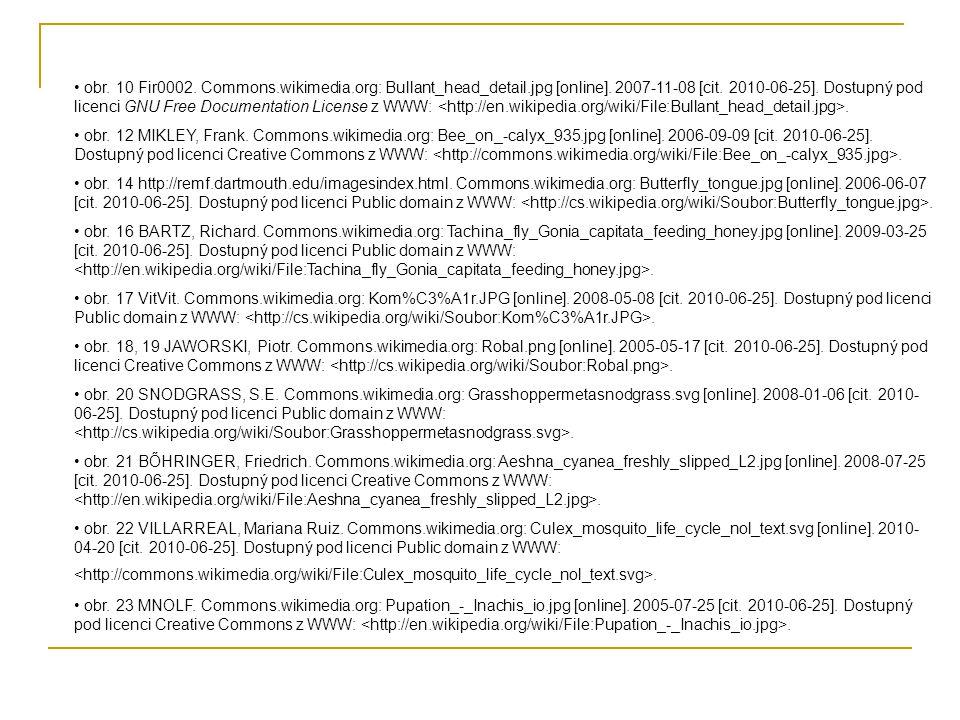 • obr. 10 Fir0002. Commons.wikimedia.org: Bullant_head_detail.jpg [online]. 2007-11-08 [cit. 2010-06-25]. Dostupný pod licenci GNU Free Documentation