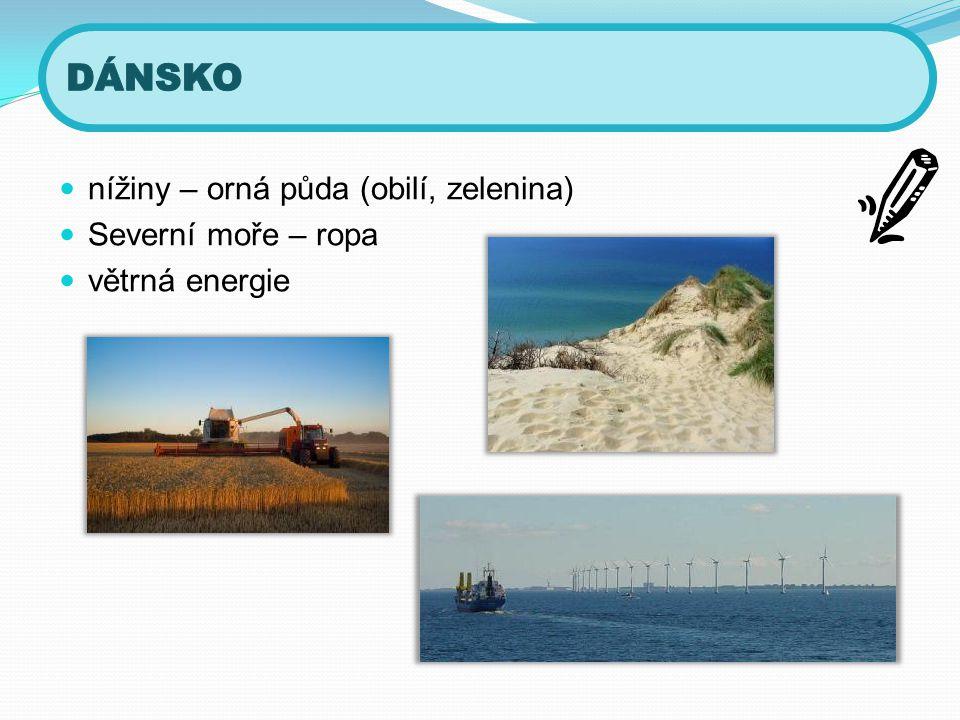  nížiny – orná půda (obilí, zelenina)  Severní moře – ropa  větrná energie