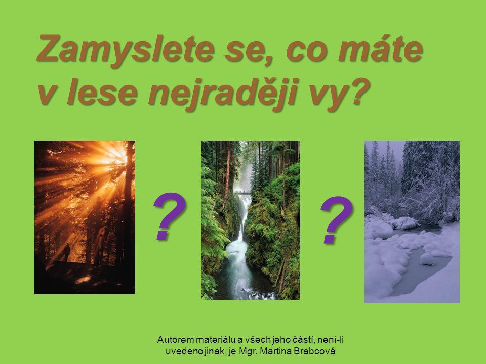 Autorem materiálu a všech jeho částí, není-li uvedeno jinak, je Mgr. Martina Brabcová Zamyslete se, co máte v lese nejraději vy? ? ?