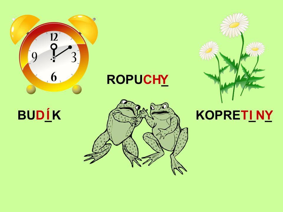 BUD_KÍ ROPUCH_Y KOPRET_N_IY