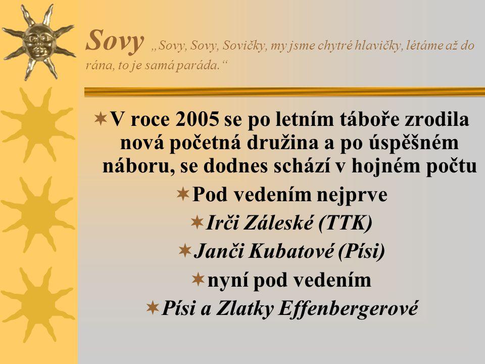 """Sovy """"Sovy, Sovy, Sovičky, my jsme chytré hlavičky, létáme až do rána, to je samá paráda.""""  V roce 2005 se po letním táboře zrodila nová početná druž"""