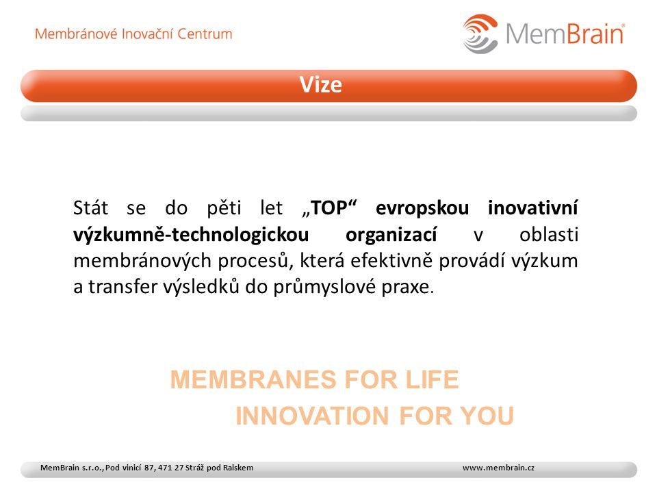 """Stát se do pěti let """"TOP evropskou inovativní výzkumně-technologickou organizací v oblasti membránových procesů, která efektivně provádí výzkum a transfer výsledků do průmyslové praxe."""