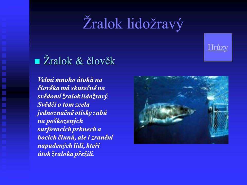 Žralok lidožravý  Způsob lovu Zoologové se domnívají, že jakmile žralok lidožravý dosáhne určité délky a hmotnosti, změní od základu své dosavadní životní návyky.