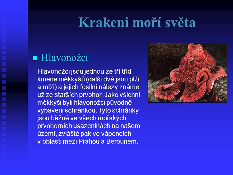 Hlavonožci  TĚLO U chobotnice je to kulovité tělo bez kostí, u krakatic (kam patří i olihně a kalmaři) je tělo podlouhlé, někdy torpédovité.
