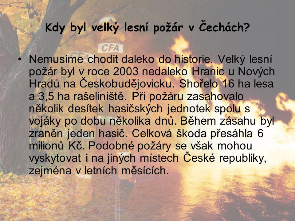 Kdy byl velký lesní požár v Čechách? •Nemusíme chodit daleko do historie. Velký lesní požár byl v roce 2003 nedaleko Hranic u Nových Hradů na Českobud
