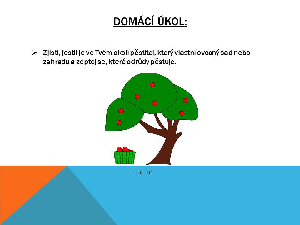 DOMÁCÍ ÚKOL:  Zjisti, jestli je ve Tvém okolí pěstitel, který vlastní ovocný sad nebo zahradu a zeptej se, které odrůdy pěstuje. Obr. 16