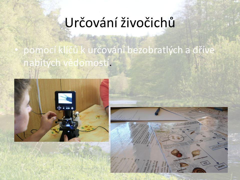 Zjištění • na základě některých ulovených živočichů, kteří jsou indikátory čisté vody (např: b lešivec potoční, larva Jepice a r ak říční) lze soudit, že voda v řece Moravice je čistá