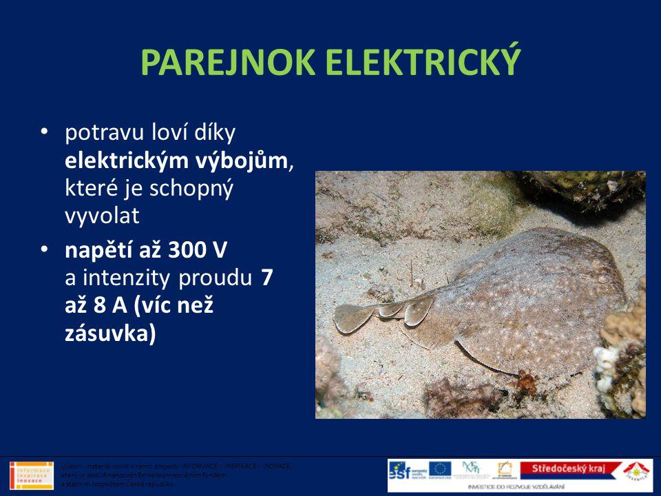 PAREJNOK ELEKTRICKÝ • potravu loví díky elektrickým výbojům, které je schopný vyvolat • napětí až 300 V a intenzity proudu 7 až 8 A (víc než zásuvka)