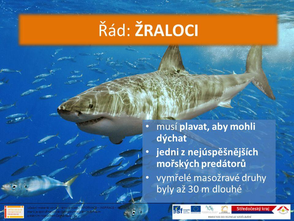 • musí plavat, aby mohli dýchat • jedni z nejúspěšnějších mořských predátorů • vymřelé masožravé druhy byly až 30 m dlouhé Řád: ŽRALOCI Učební materiá
