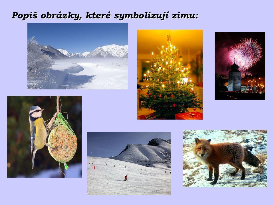 Popiš obrázky, které symbolizují zimu: