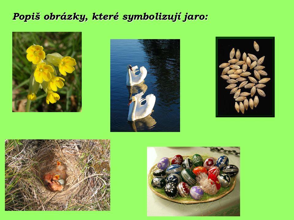 Popiš obrázky, které symbolizují jaro: