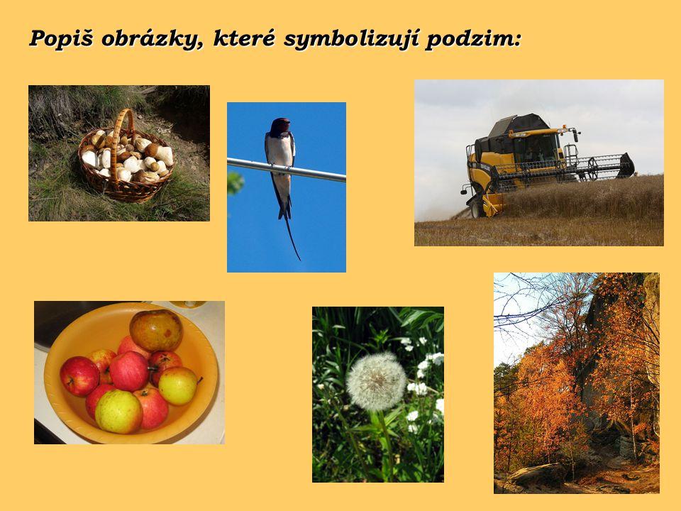 Popiš obrázky, které symbolizují podzim: