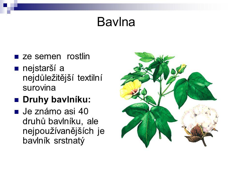 LEN  jednoletá stonková rostlina  kvete modrofialově, růžově nebo bíle  sklizeň (nejvýnosnější a nejkvalitnější vlákno je v době rané žluté zralosti) se provádí většinou trhacími stroji nebo kombajny