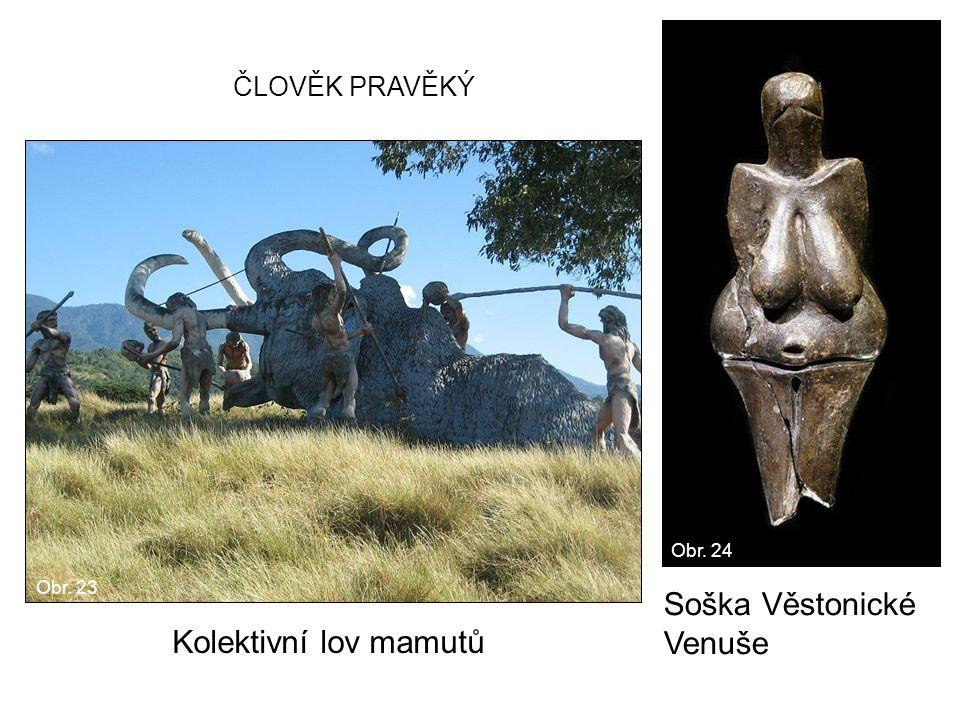 Kolektivní lov mamutů Soška Věstonické Venuše ČLOVĚK PRAVĚKÝ Obr. 23 Obr. 24