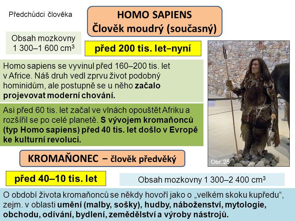 Předchůdci člověka před 200 tis. let − nyní Homo sapiens se vyvinul před 160–200 tis. let v Africe. Náš druh vedl zprvu život podobný hominidům, ale p