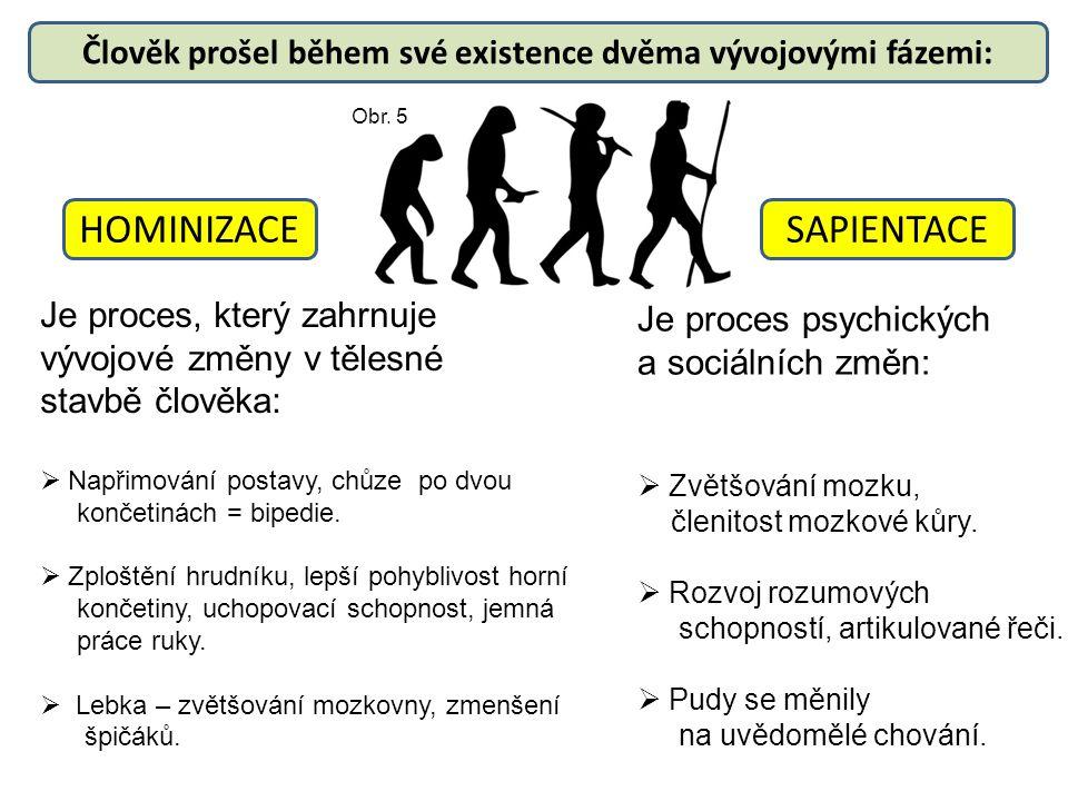 Člověk prošel během své existence dvěma vývojovými fázemi: HOMINIZACESAPIENTACE Je proces, který zahrnuje vývojové změny v tělesné stavbě člověka:  N
