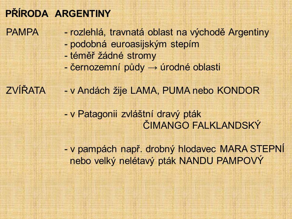PŘÍRODA ARGENTINY PAMPA - rozlehlá, travnatá oblast na východě Argentiny - podobná euroasijským stepím - téměř žádné stromy - černozemní půdy → úrodné oblasti ZVÍŘATA - v Andách žije LAMA, PUMA nebo KONDOR - v Patagonii zvláštní dravý pták ČIMANGO FALKLANDSKÝ - v pampách např.