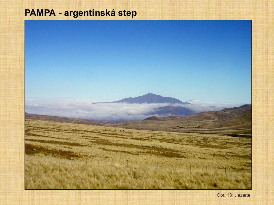 Obr. 13: Jlazarte PAMPA - argentinská step