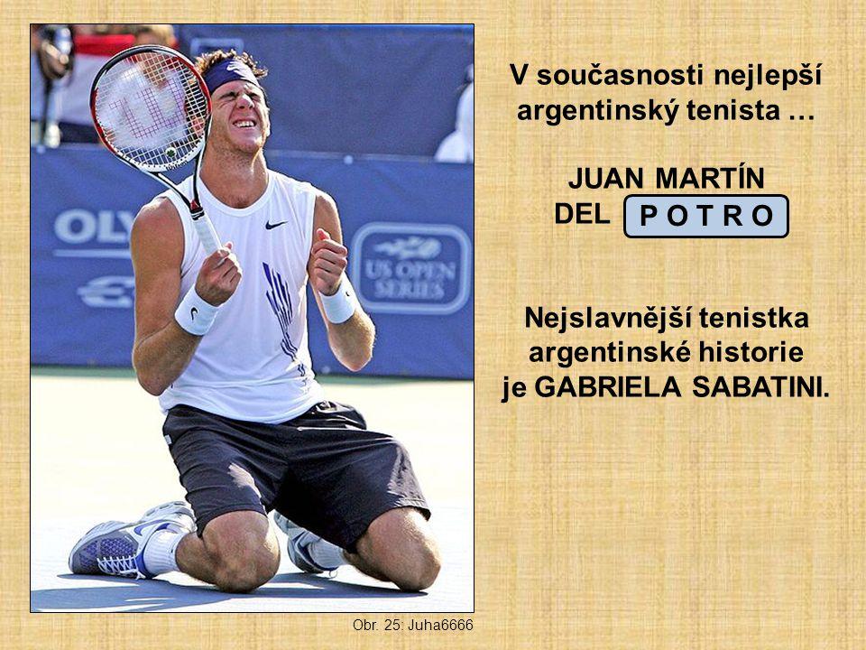 V současnosti nejlepší argentinský tenista … JUAN MARTÍN DEL _ _ _ _ _ Nejslavnější tenistka argentinské historie je GABRIELA SABATINI.