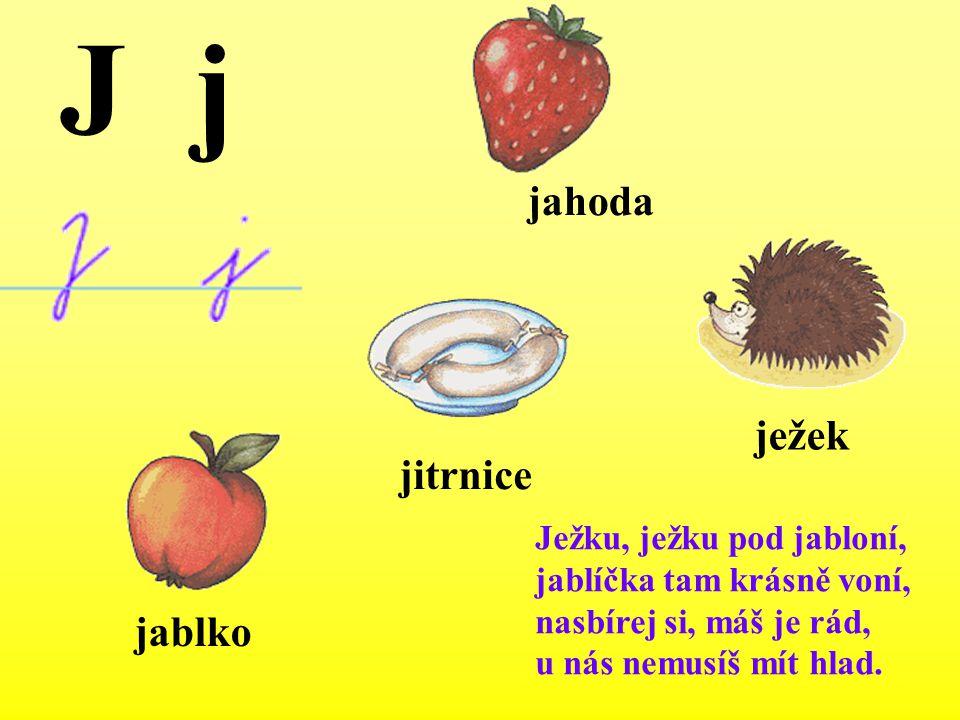 Ježku, ježku pod jabloní, jablíčka tam krásně voní, nasbírej si, máš je rád, u nás nemusíš mít hlad. ježek jablko jahoda jitrnice J j