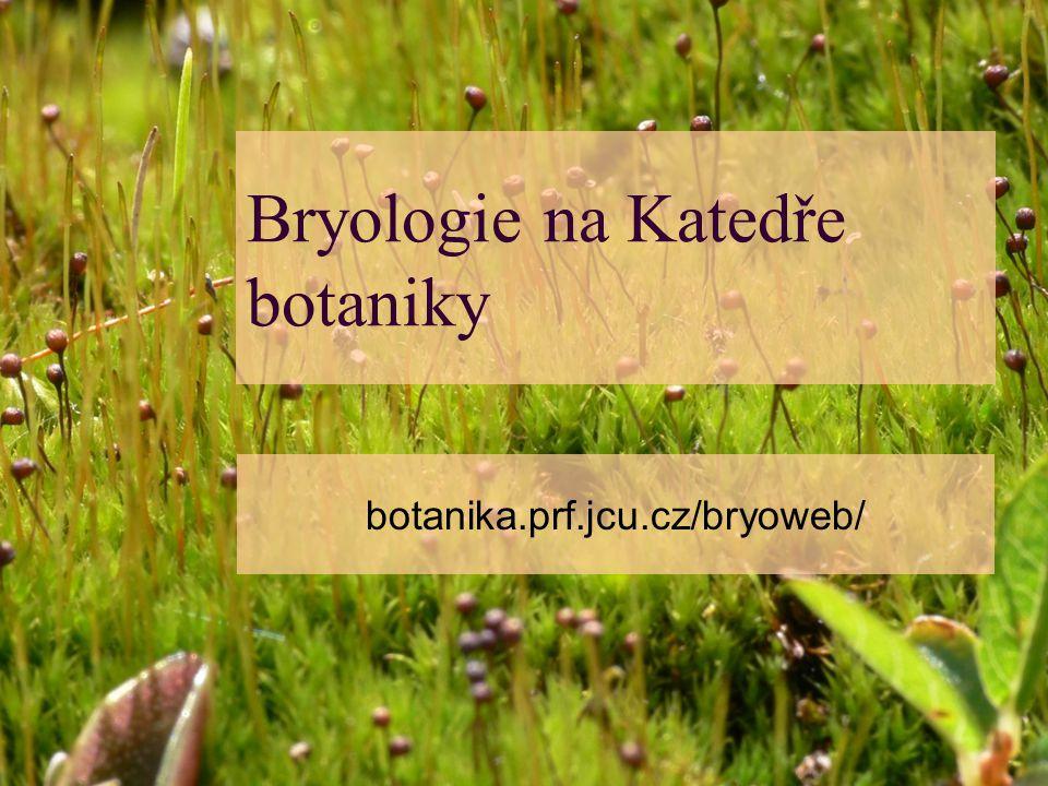 Bryologie na Katedře botaniky botanika.prf.jcu.cz/bryoweb/