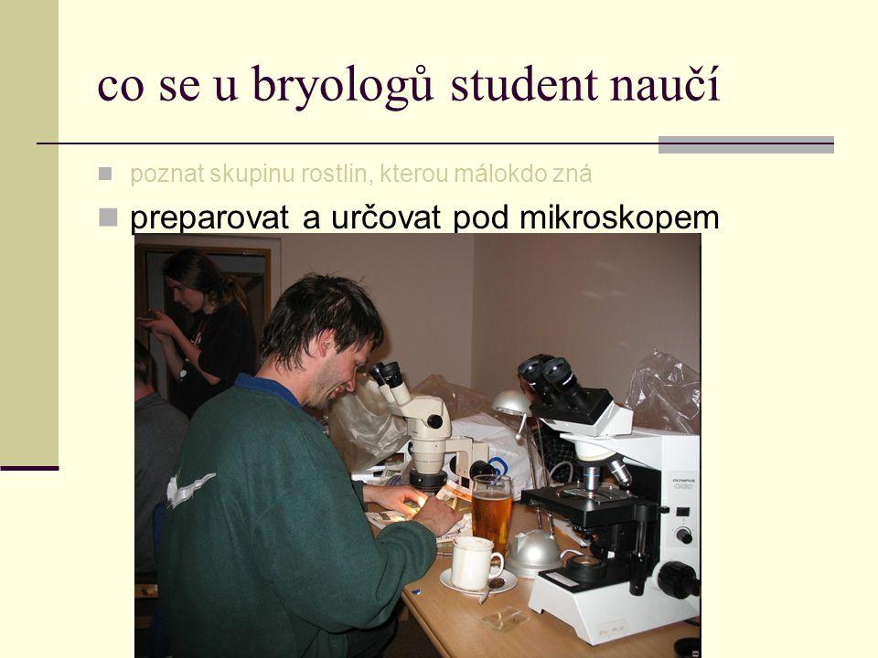 co se u bryologů student naučí  poznat skupinu rostlin, kterou málokdo zná  preparovat a určovat pod mikroskopem
