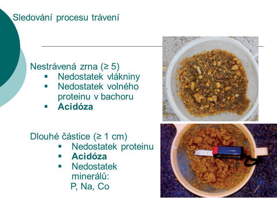 Nestrávená zrna (≥ 5)  Nedostatek vlákniny  Nedostatek volného proteinu v bachoru  Acidóza Dlouhé částice (≥ 1 cm)  Nedostatek proteinu  Acidóza  Nedostatek minerálů: P, Na, Co Sledování procesu trávení