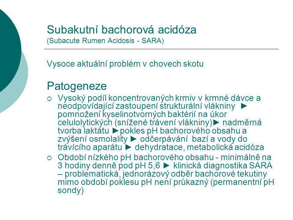 Subakutní bachorová acidóza (Subacute Rumen Acidosis - SARA) Vysoce aktuální problém v chovech skotu Patogeneze  Vysoký podíl koncentrovaných krmiv v krmné dávce a neodpovídající zastoupení strukturální vlákniny ► pomnožení kyselinotvorných baktérií na úkor celulolytických (snížené trávení vlákniny)► nadměrná tvorba laktátu ►pokles pH bachorového obsahu a zvýšení osmolality ► odčerpávání bazí a vody do trávícího aparátu ► dehydratace, metabolická acidóza  Období nízkého pH bachorového obsahu - minimálně na 3 hodiny denně pod pH 5,6 ► klinická diagnostika SARA – problematická, jednorázový odběr bachorové tekutiny mimo období poklesu pH není průkazný (permanentní pH sondy)
