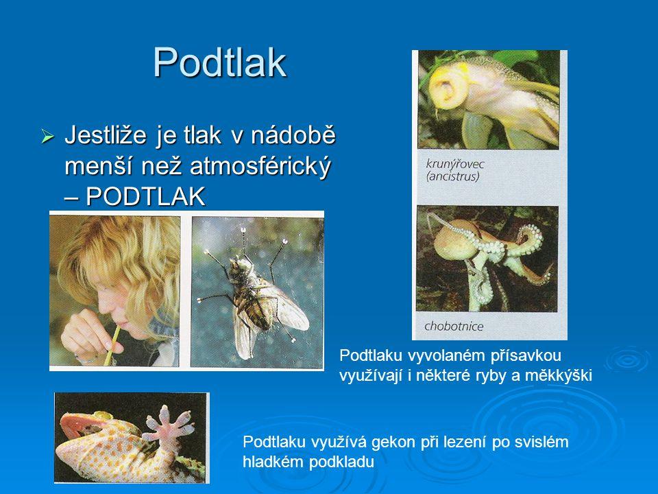 Podtlak  Jestliže je tlak v nádobě menší než atmosférický – PODTLAK Podtlaku využívá gekon při lezení po svislém hladkém podkladu Podtlaku vyvolaném přísavkou využívají i některé ryby a měkkýški