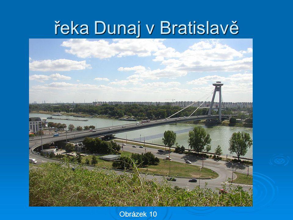 řeka Dunaj v Bratislavě Obrázek 10