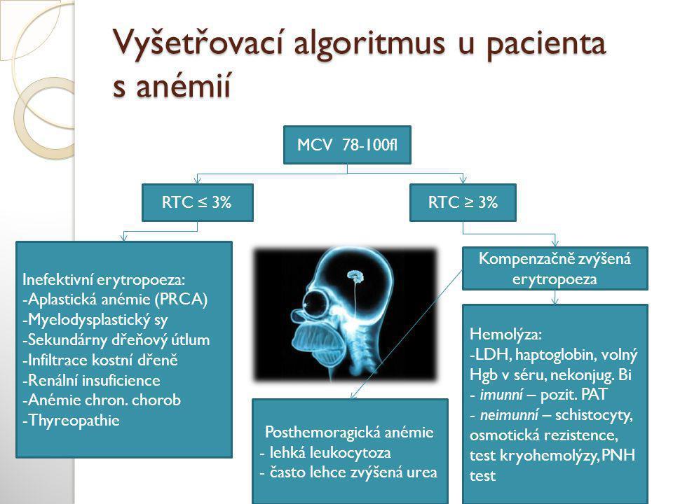 Vyšetřovací algoritmus u pacienta s anémií MCV 78-100fl RTC ≤ 3%RTC ≥ 3% Kompenzačně zvýšená erytropoeza Hemolýza: -LDH, haptoglobin, volný Hgb v séru, nekonjug.