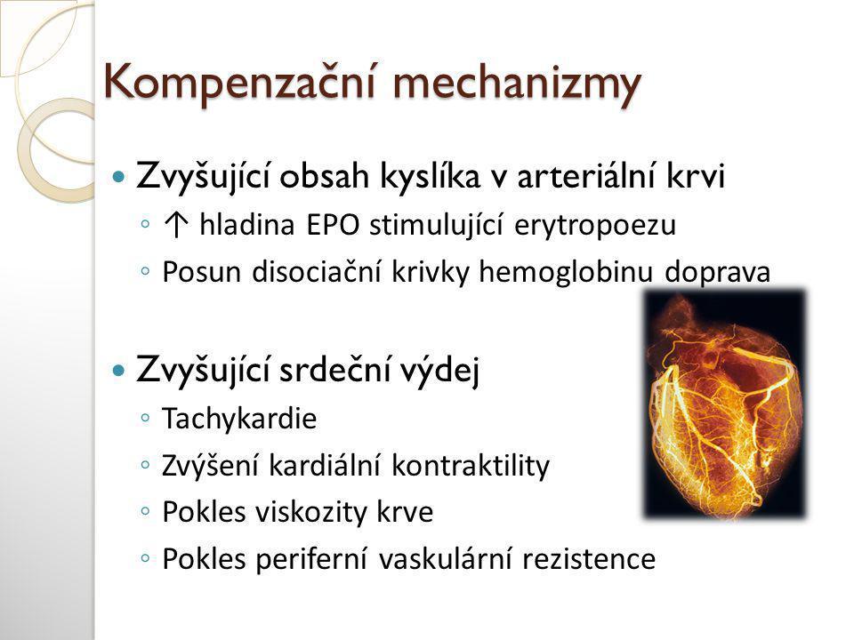 Rozdelení anémií dle patogenézy 1.Inefektivní erytropoeza 2.
