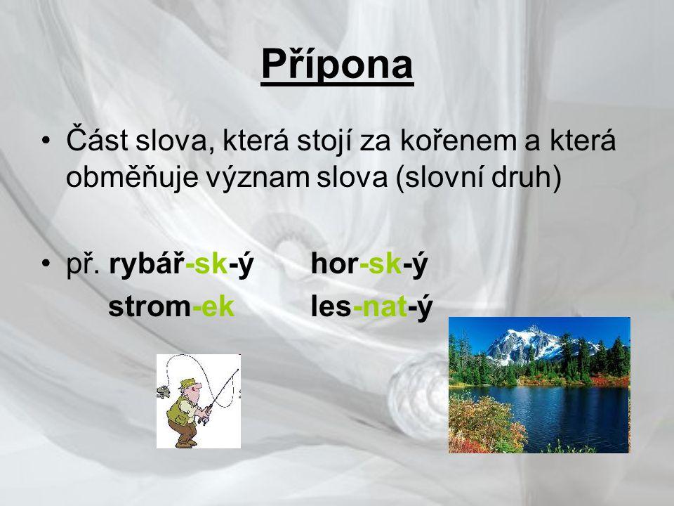 Přípona •Část slova, která stojí za kořenem a která obměňuje význam slova (slovní druh) •př.