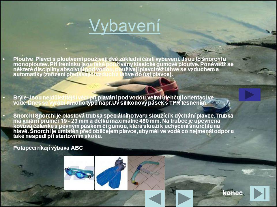 Vybavení •P•Ploutve Plavci s ploutvemi používají dvě základní části vybavení. Jsou to šnorchl a monoploutev. Při tréninku jsou také používány klasické