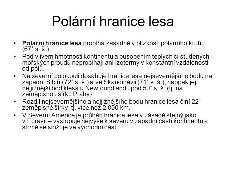 Polární hranice lesa •Polární hranice lesa probíhá zásadně v blízkosti polárního kruhu (67˚ s. š.). •Pod vlivem hmotnosti kontinentů a působením teplý