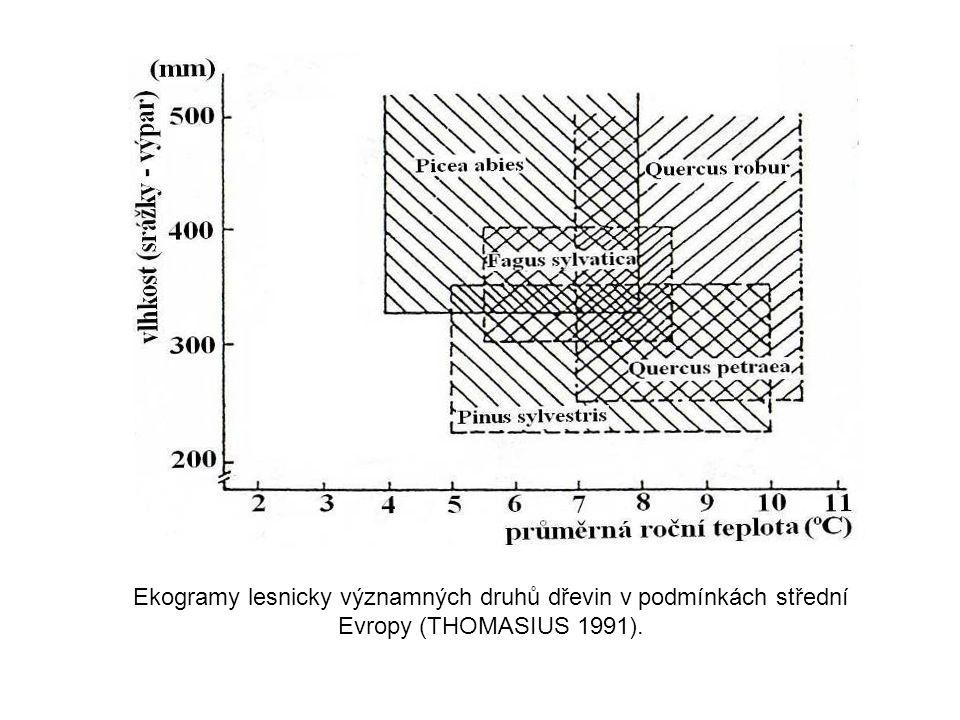 Ekogramy lesnicky významných druhů dřevin v podmínkách střední Evropy (THOMASIUS 1991).