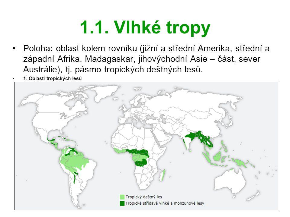 1.1. Vlhké tropy •Poloha: oblast kolem rovníku (jižní a střední Amerika, střední a západní Afrika, Madagaskar, jihovýchodní Asie – část, sever Austrál