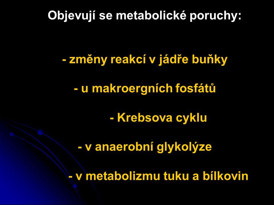 Objevují se metabolické poruchy: - změny reakcí v jádře buňky - u makroergních fosfátů - Krebsova cyklu - v anaerobní glykolýze - v metabolizmu tuku a bílkovin