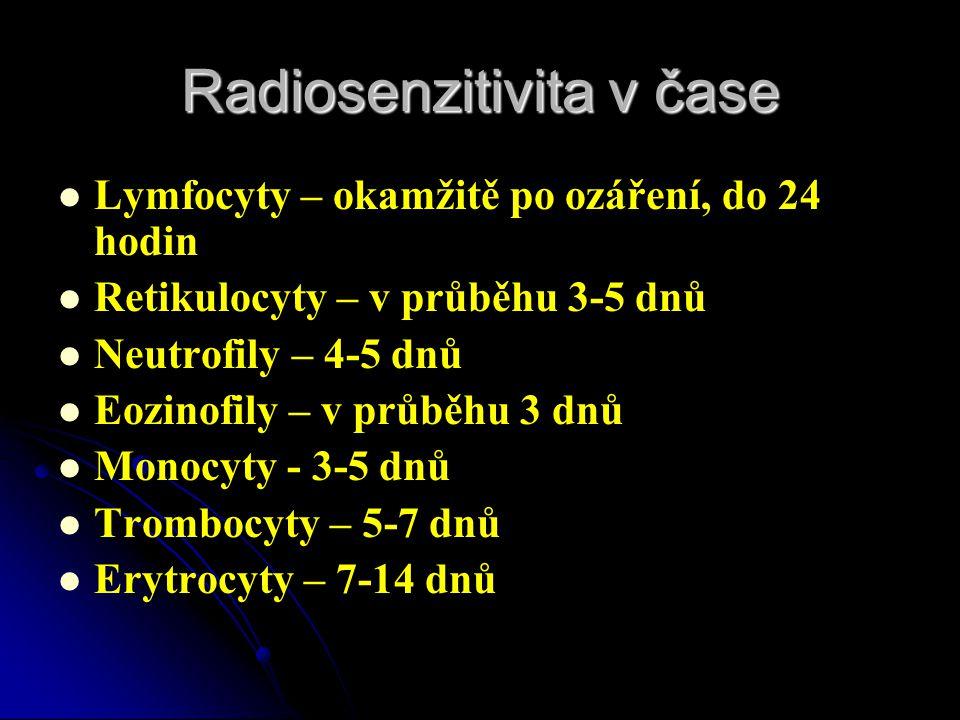 Radiosenzitivita v čase   Lymfocyty – okamžitě po ozáření, do 24 hodin   Retikulocyty – v průběhu 3-5 dnů   Neutrofily – 4-5 dnů   Eozinofily
