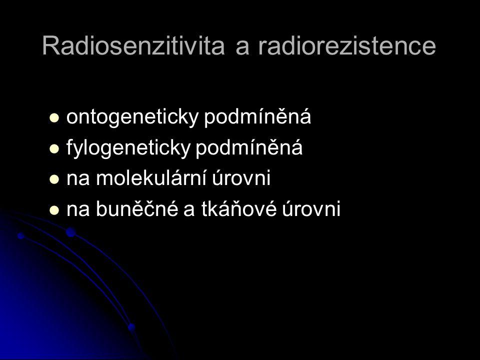 Radiosenzitivita a radiorezistence   ontogeneticky podmíněná   fylogeneticky podmíněná   na molekulární úrovni   na buněčné a tkáňové úrovni