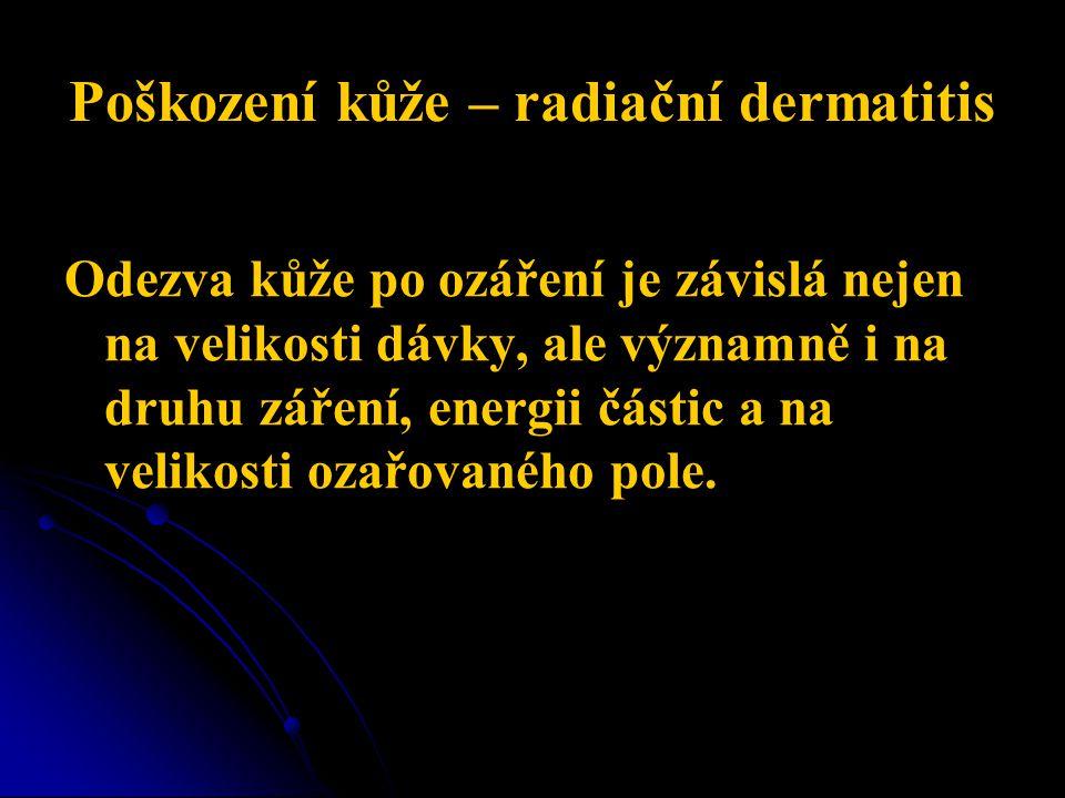 Poškození kůže – radiační dermatitis Odezva kůže po ozáření je závislá nejen na velikosti dávky, ale významně i na druhu záření, energii částic a na velikosti ozařovaného pole.