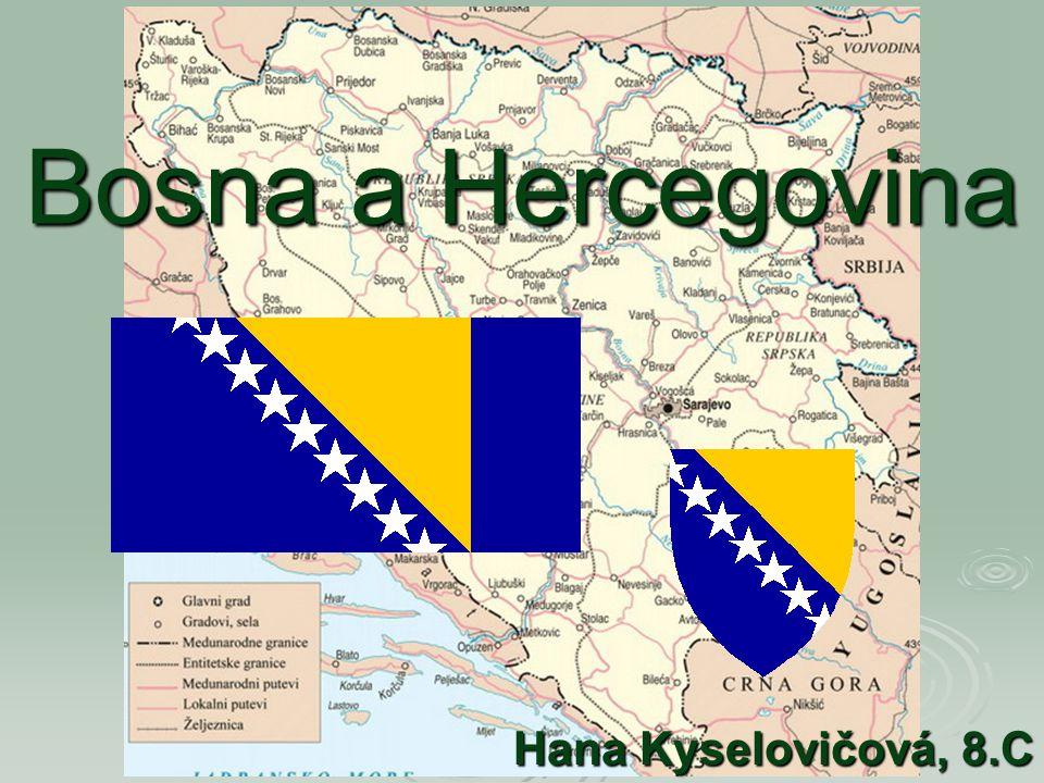 Základní informace  Oficiální název: Bosna a Hercegovina (česky), Bosna i Hercegovina (bosensky, chorvatsky), Босна и Херцеговина (srbsky)  Státní zřízení: parlamentní federativní republika  Hlavní město: Sarajevo (441 000 obyvatel)  Rozloha: 51 209,2 km 2  Počet obyvatel: 3 832 301 (červen 2003)  Etnické složení: Bosňáci 48,2%, Srbové 37,2%, Chorvaté 13,7% (2003)  Úřední jazyky: bosenština 41%, srbština 40%, chorvatština 19%  Měna: bosenskohercegovská konvertibilní marka (BAM, národní označení KM), 1,955 KM = 1 EUR, 1 KM = 0,100 feniků