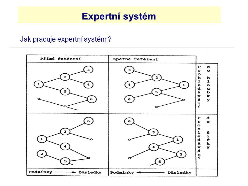 Jak pracuje expertní systém ? Expertní systém