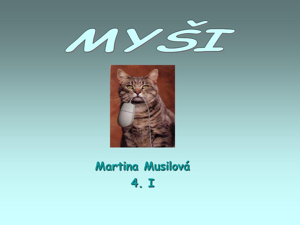 Martina Musilová 4. I