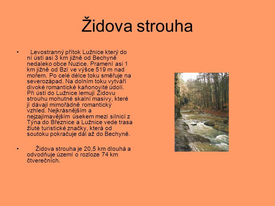 Židova strouha • Levostranný přítok Lužnice který do ní ústí asi 3 km jižně od Bechyně nedaleko obce Nuzice. Pramení asi 1 km jižně od Bzí ve výšce 51