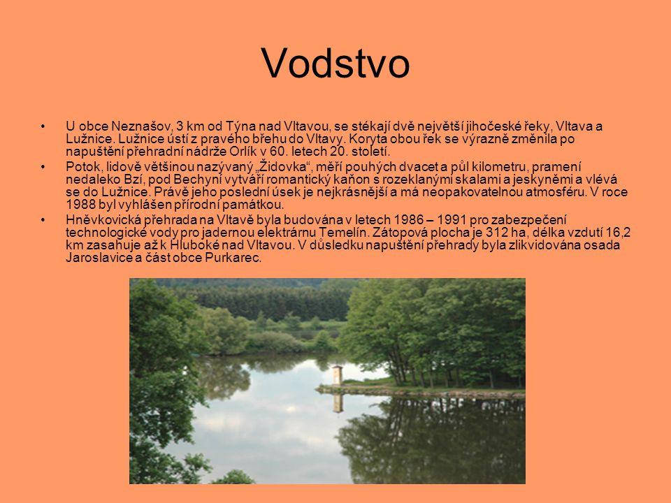 Podnebí •Podnebí v jižních Čechách je mírné, vlhké s největším množstvím srážek v měsíci červenci.