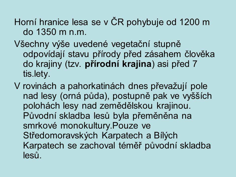 Horní hranice lesa se v ČR pohybuje od 1200 m do 1350 m n.m. Všechny výše uvedené vegetační stupně odpovídají stavu přírody před zásahem člověka do kr