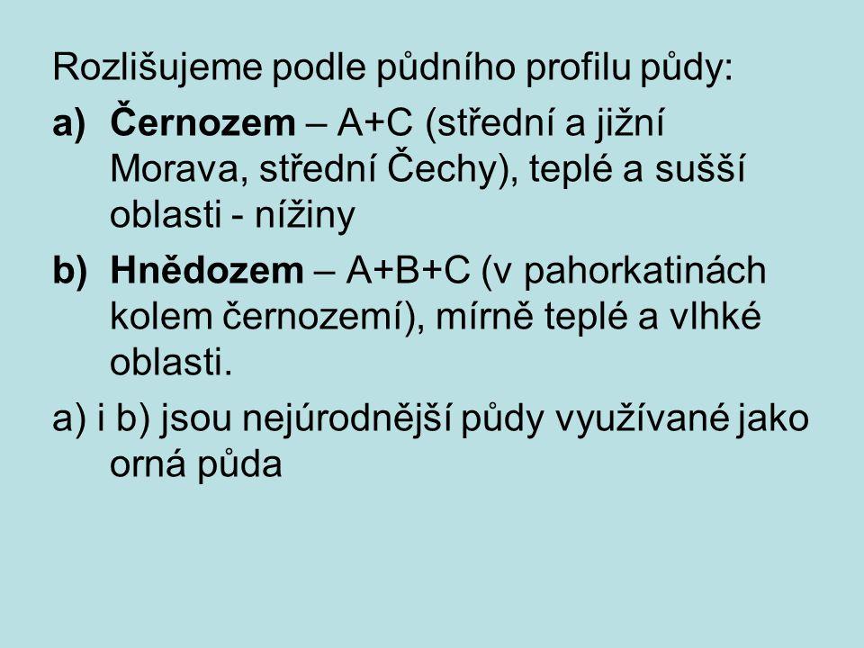 Rozlišujeme podle půdního profilu půdy: a)Černozem – A+C (střední a jižní Morava, střední Čechy), teplé a sušší oblasti - nížiny b)Hnědozem – A+B+C (v