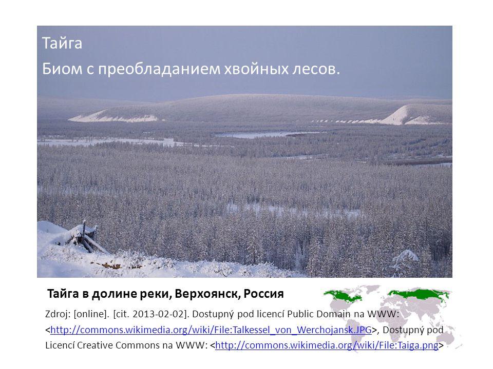 Тайга в долине реки, Верхоянск, Россия Zdroj: [online].
